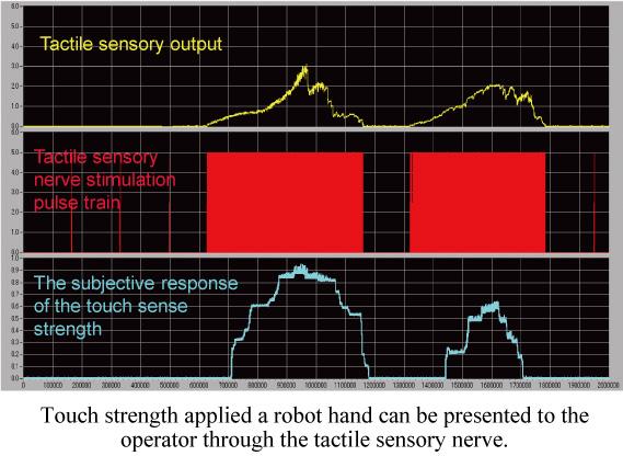 触覚神経インタフェース実験データ図